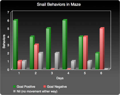 snail-behaviors-bar-graph-exploratory-experiment