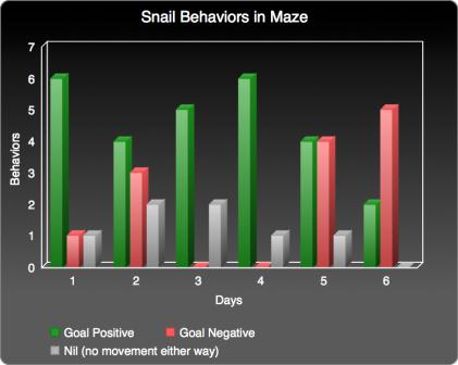 snail-behaviors-bar-graph-exploratory-experiment