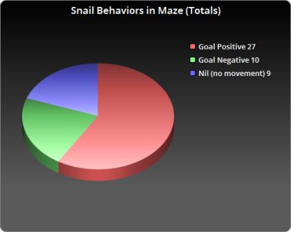snail-behaviors-in-maze-totals-exploratory-experiment