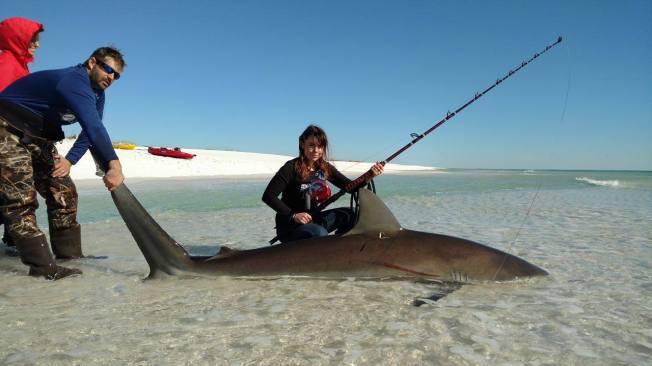 anita-shark-2
